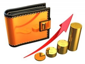 tax coin cash wallet growth rich money
