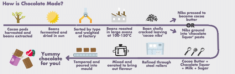How-is-Chocolate-Made