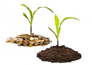 farm seed soil grow wealth money coin