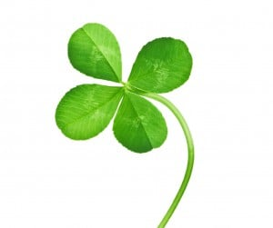 luck success win happy good irish clover four leaf fate motivation