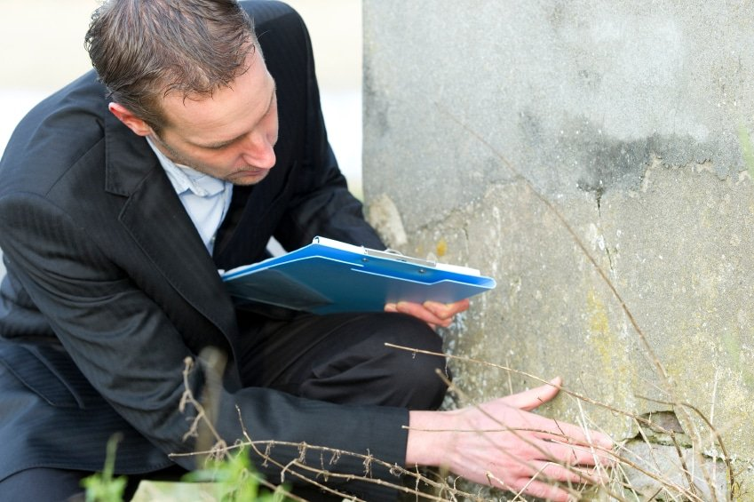 WHAT DO PEST INSPECTORS LOOK FOR?