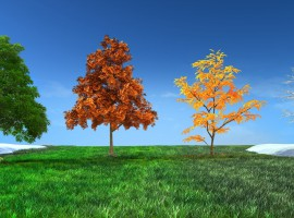 The Seasons of Life: Part 2 | Jim Rohn