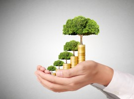 10 Commandments of Investment Strategy