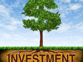 Are investment markets rational and efficient?