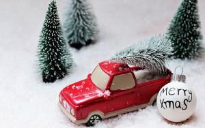 christmas-tree-1856410_1920