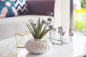 Green Plant In A Vase And Candle Stand In Living Room