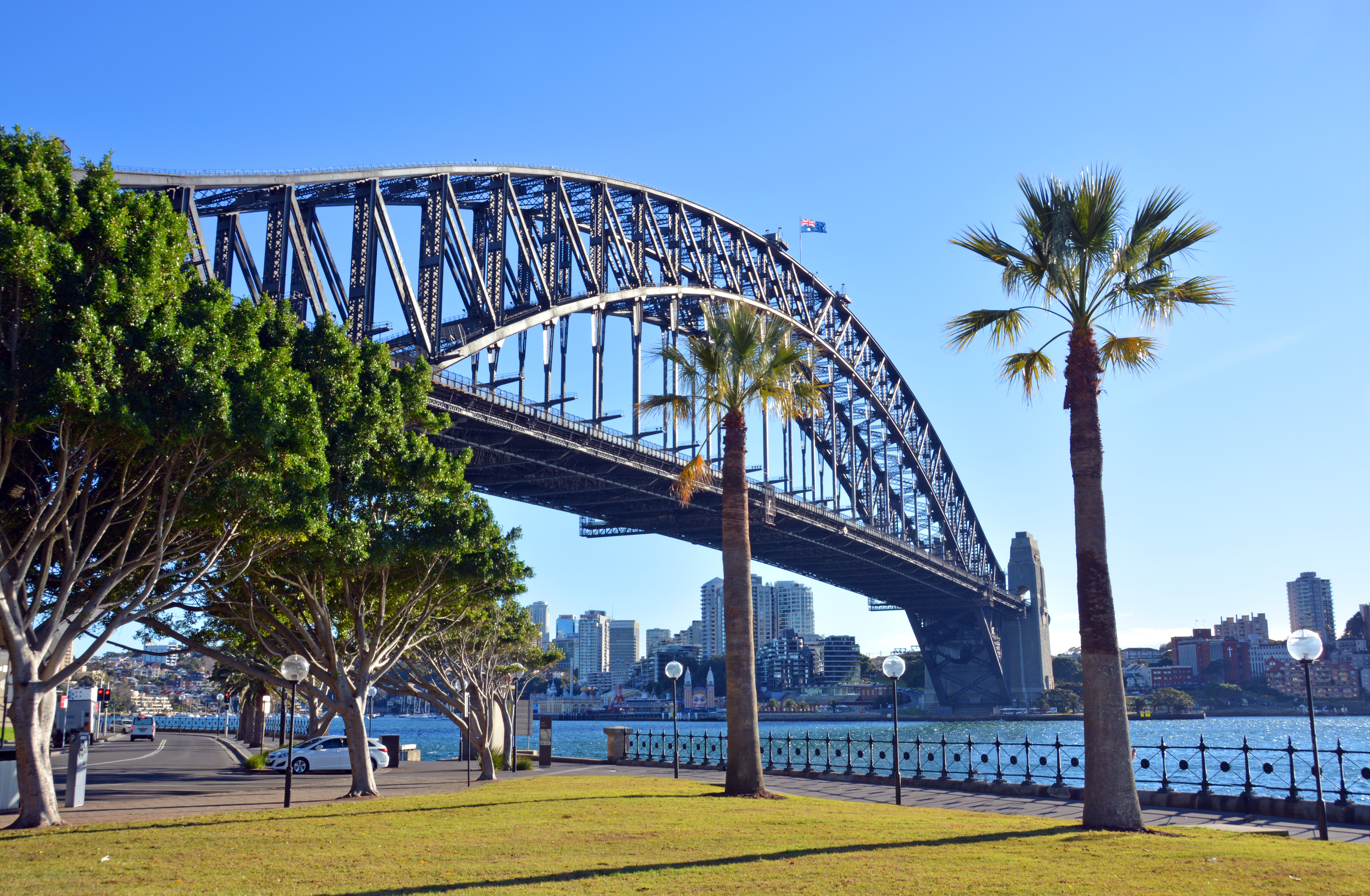 Sydney Market Completes Remarkable Turnaround in 2019 — Who Were the Big Winners?