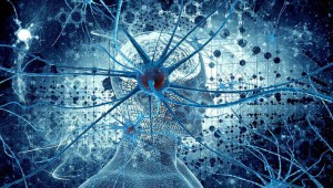 Synapse Brain