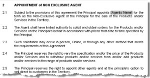 real estate agency agreement