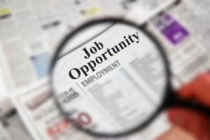 Jobs Oportunity
