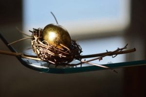 A Golden Egg In A Birds Nest In Subdued Lighting O Long Term