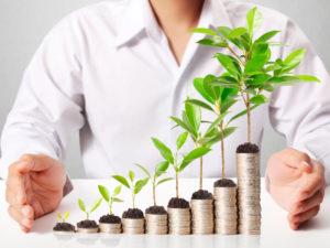 Growing Wealth